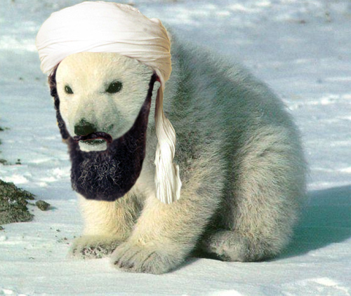 polar_bear_bin_laden